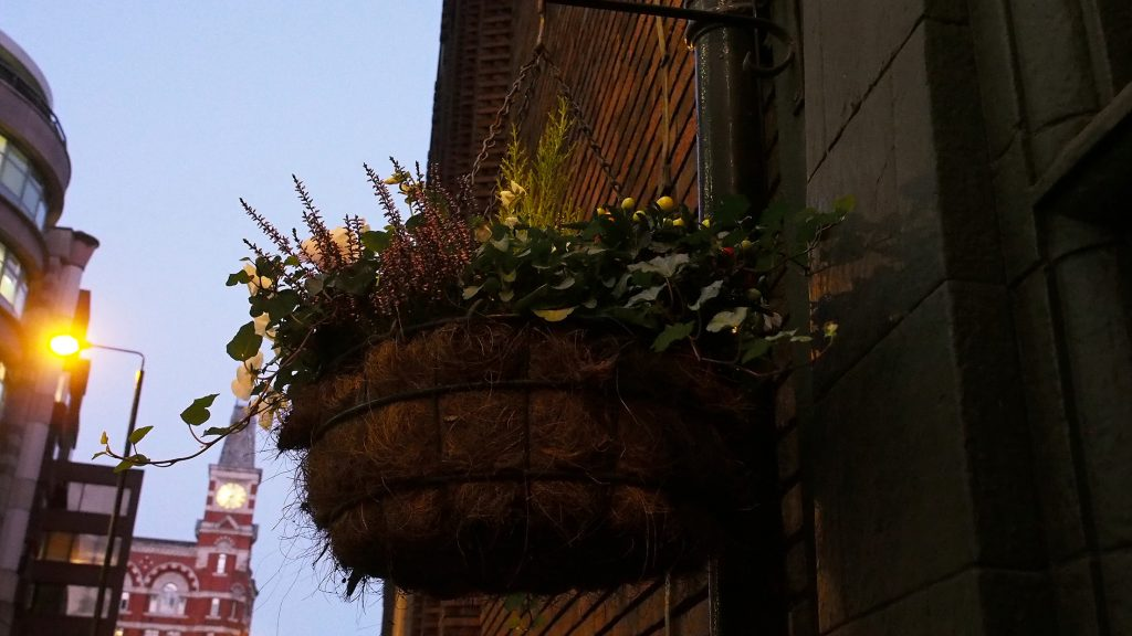 Strong hanging basket game. Always a promising sign.